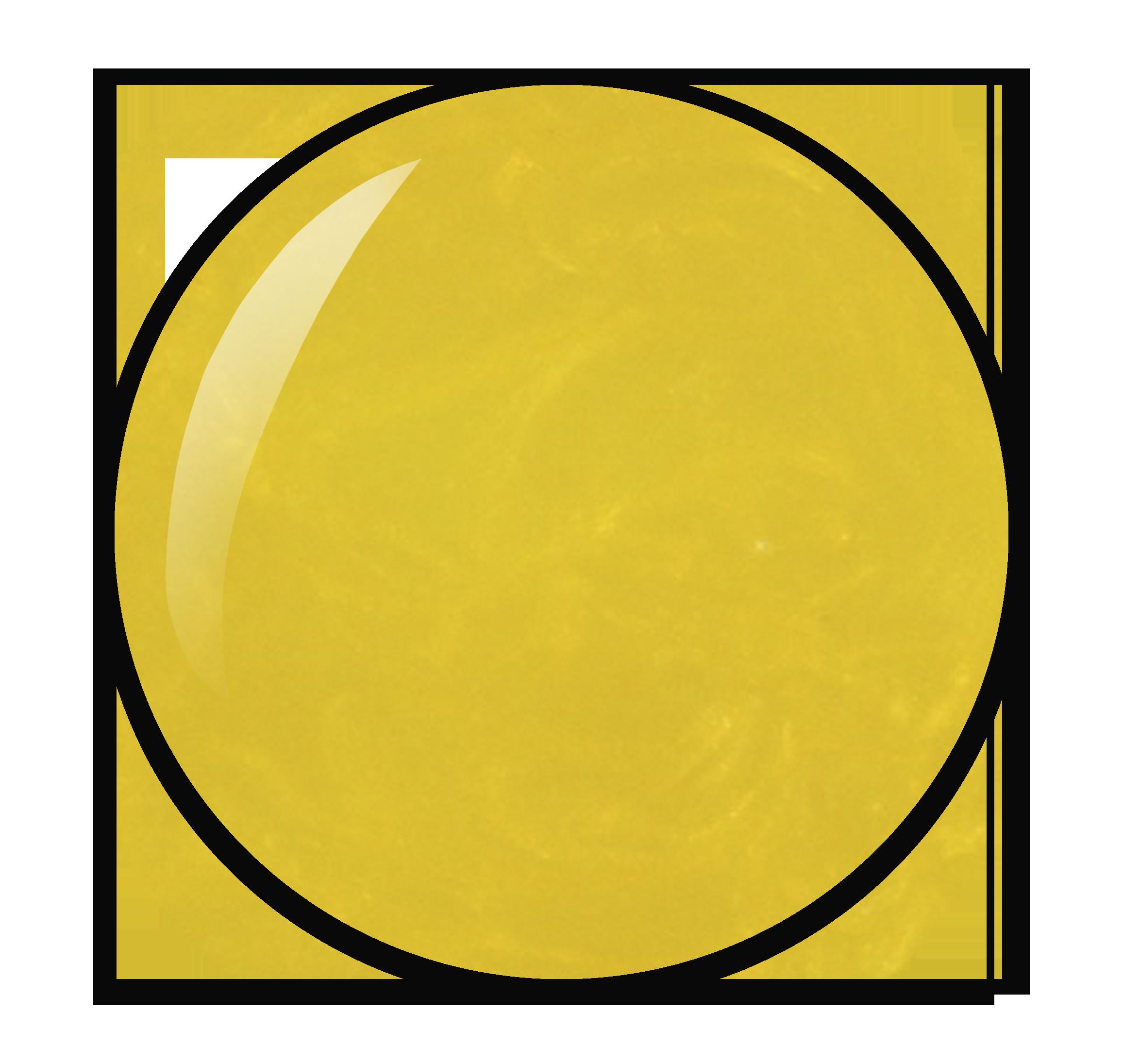 Gele nagellak kleurnummer 64 uit Herôme nagellak collectie